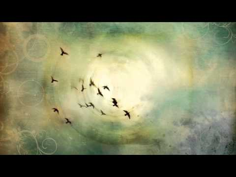 Shaina Noll ~Where I Sit is Holy Video | Native American Chants
