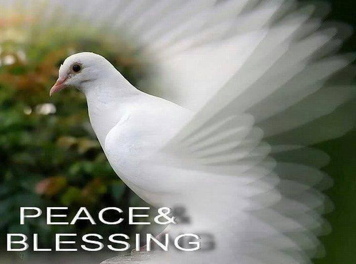 Peace & Blessing
