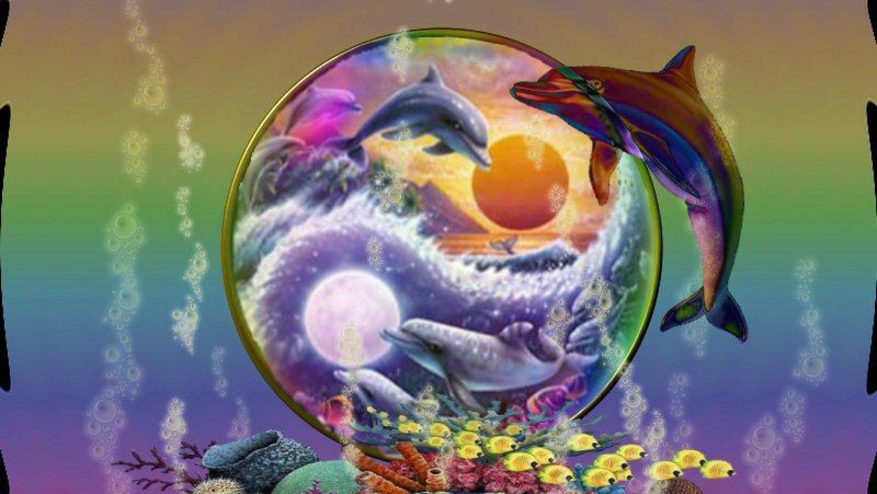 Nieuw leven in de dolfijnenbron