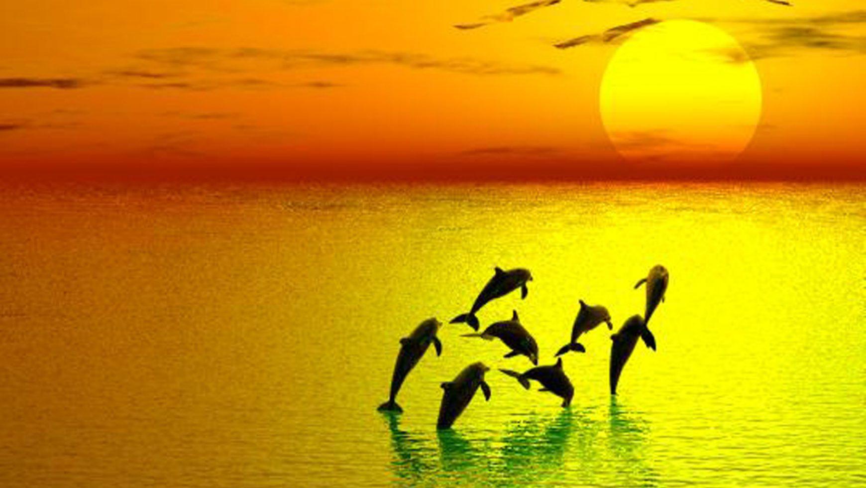 Oceanen van licht