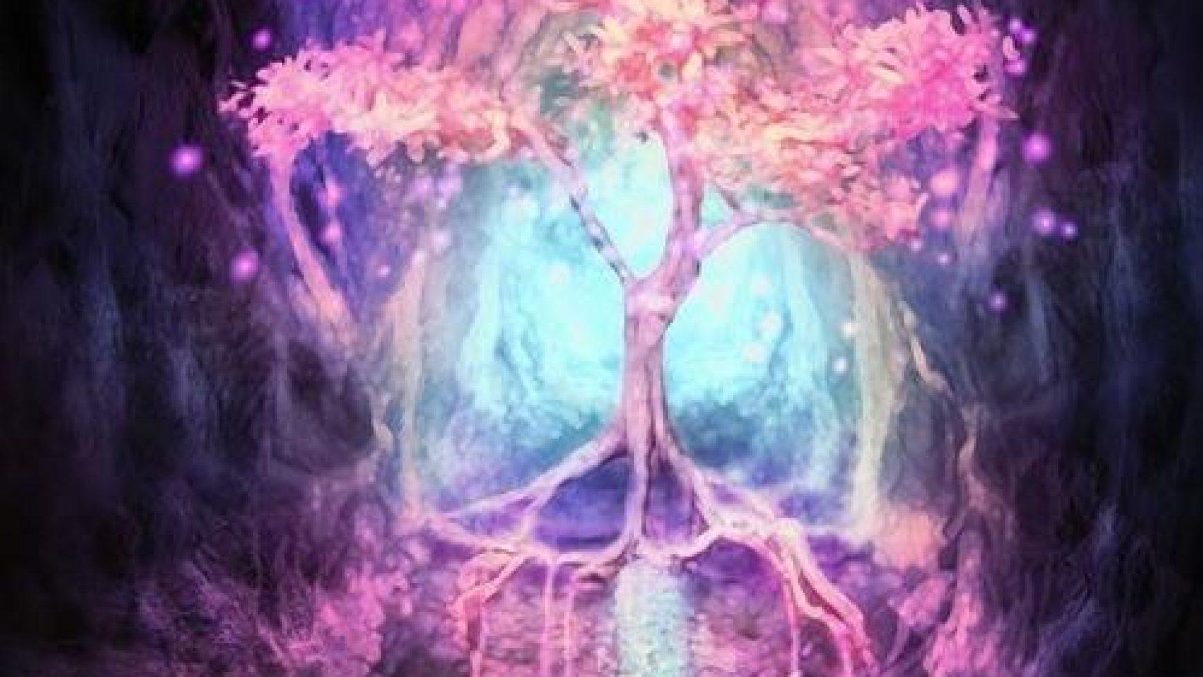 De boom van vertrouwen