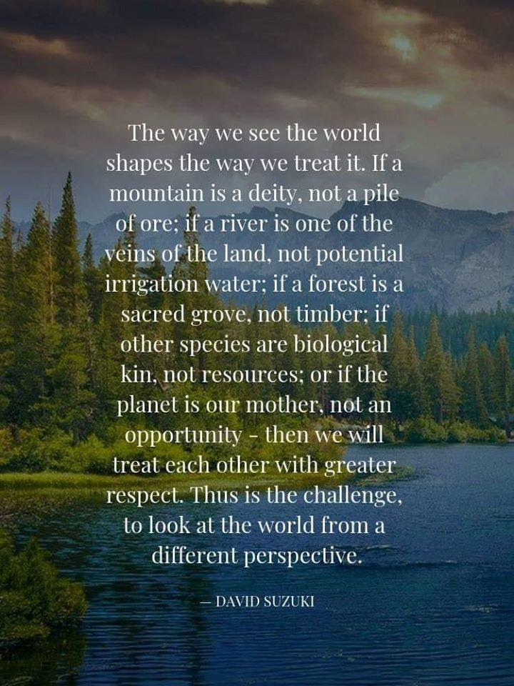 The way we see the world.