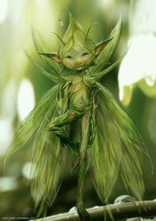 With the faeries.